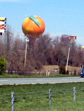 I saw the big peach.