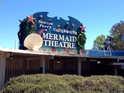 I saw mermaids.